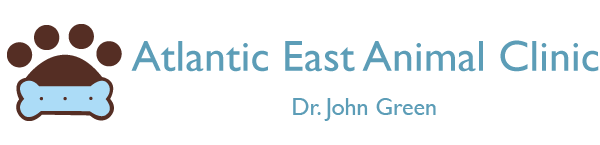 Logo for Veterinarians Atlantic Beach | Atlantic East Pet Center